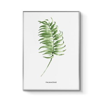 Green Nordic adornment picture sitting room hangs wall decor contracted plant small and pure and fresh dining-room murals B cool