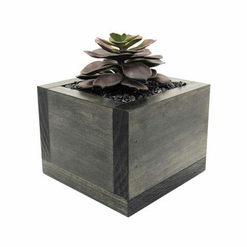 Mini Planter, Planter Box, Succulent Planter, Wood Planter, Succulent Gift, Modern Planter, Succulent Pot, Indoor Planter, Rustic Planter