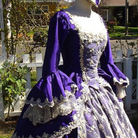 Marie Antoinette Gown Fantasy Costume Sparkle Lace and Trim Your Size/color