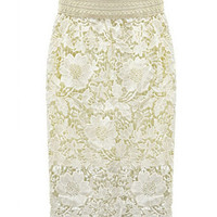 Lace Embroidered Midi Bodycon Skirt