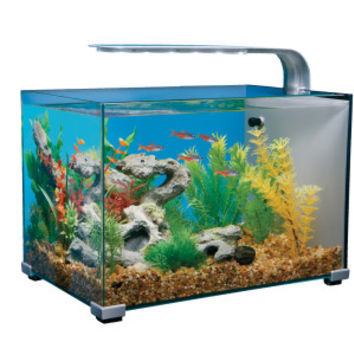 Top Fin® 5 Gallon Glass Aquarium | Aquariums | PetSmart