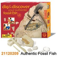 Geoworld Dig and Discover Authentic Fossil Fish