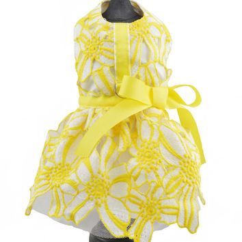 Yellow & White Flower Lace Dog Harness Dress