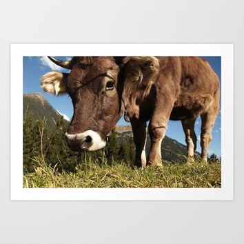 cute cow close Art Print by tanjariedel