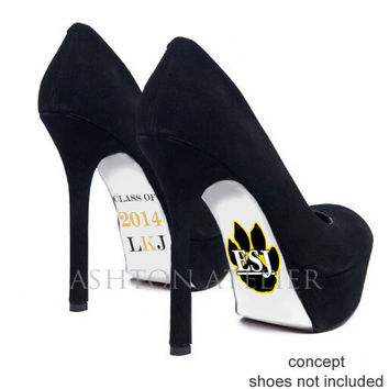 Custom hand painted Graduation Class of 2014 heels