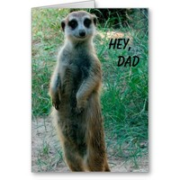 Meerkat Happy Father's Day Greeting Card