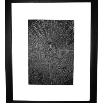 Real Spider Web Created by the Spined Micrathena Orb Weaver Matted or Framed