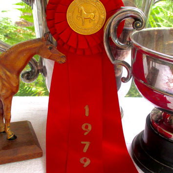 Vintage HORSE SHOW RIBBON Rosette 1979 Devon Horse Show & Country Fair Red Ribbon Devon Penna.