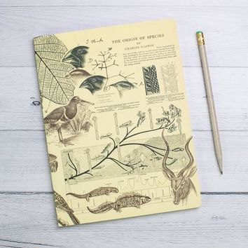 Evolution Softcover Notebook - Lined