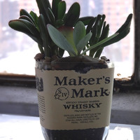 Rehabulous Makers Mark Bottle Planter | zulily