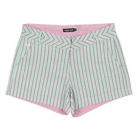 Turner Stripe Brighton Short in Mint by Southern Marsh - FINAL SALE