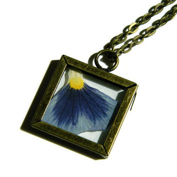 Purple and Yellow Pressed Pansy Flower Petal in Antique Brass Clear Glass Locket Square Pendant Necklace