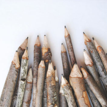 BULK 50 twig pencils, wedding favors, class room decor, rustic wedding  decor, office supplies