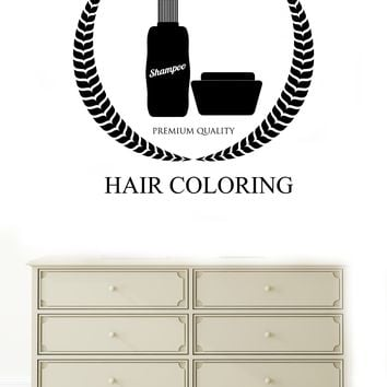 Large Vinyl Decal Wall Sticker Beauty Salon Design Hair Coloring Woman (n832)