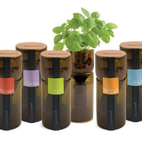 Grow Your Own Hydroponic Garden With the GrowBottle | Inhabitat - Green Design Will Save the World