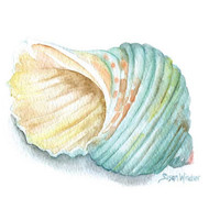 Green Turbo Seashell Watercolor Painting - 5 x 7 - Summer Beach Painting- Giclee Print