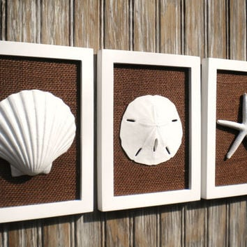 Cottage Chic Set of Beach Wall Art, Sea Shells Home Decor, Beach Decor, Wall Art, Coastal Decor, WHITE Wth Chocolate BROWN Burlap