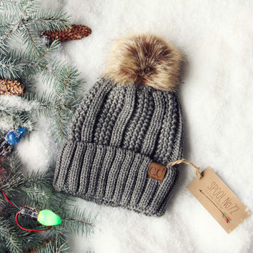 Snow Dust Cozy Beanie in Gray