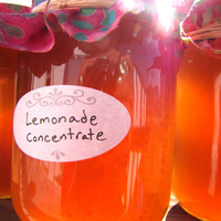 Fresh Squeezed Lemonade Concentrate
