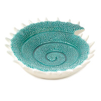 Turquoise Seashell Decorative Accent