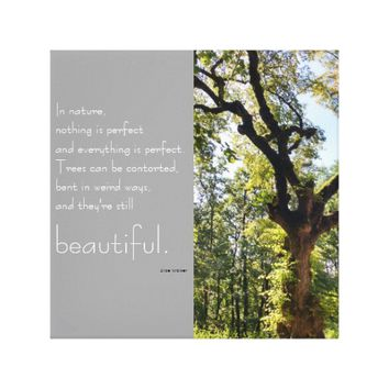 Beautiful old Tree and inspirational quotation Canvas Print