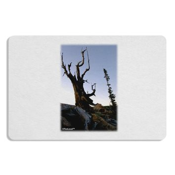Colorado Mountain Scenery Placemat by TooLoud Set of 4 Placemats