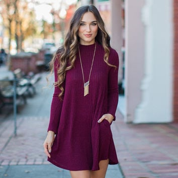 Casual Long Sleeve Solid Color knit Dress