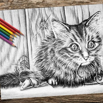 Kitten Cat coloring book pages, adult coloring book, coloring pages, adult coloring pages, coloring book for adults, printable coloring page