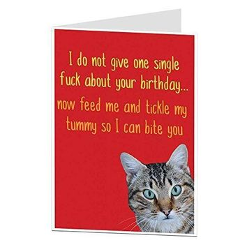 Funny Birthday Card Cat Pet Theme Rude Offensive Perfect For Owner Lover Men & Women - Free Shipping