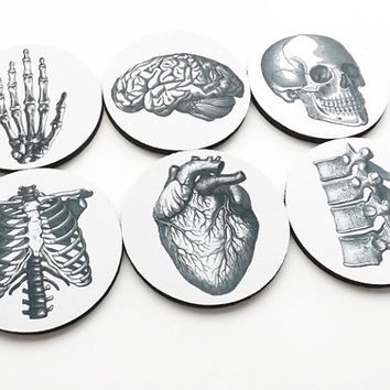 gifts COASTERS hostess graduation doctor nursing Anatomy medical student cardiology skull anatomical heart party favors geekery teacher goth