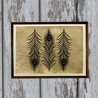 Peacock print bird art feathers illustration Old paper home decor 8.3 x 11.7 inches
