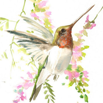 Hummingbird and soft pink flowers, original watercolor painting, 12 X 9 in, hummingbird lover wall art