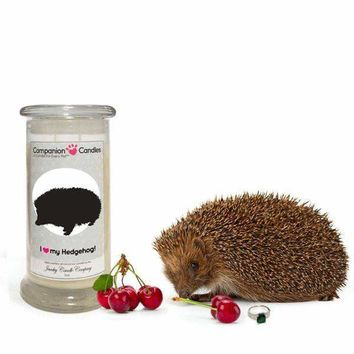 I Love My Hedgehog! - Companion Candles
