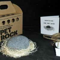 Rockinthebox Pet Rock with Walking Leash (Kraft)