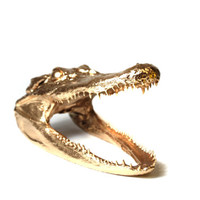 Gold Alligator Taxidermy Head