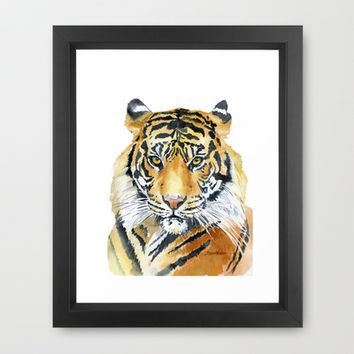 Tiger Watercolor Painting Framed Art Print by Susan Windsor