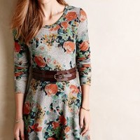 Terry Floral Fit & Flare Dress by Saturday/Sunday Grey Motif