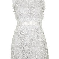 Structured Lace Bodycon Dress - Silver