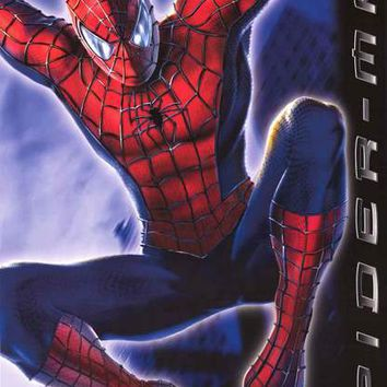 Spider-Man 2002 Marvel Comics Poster 22x34