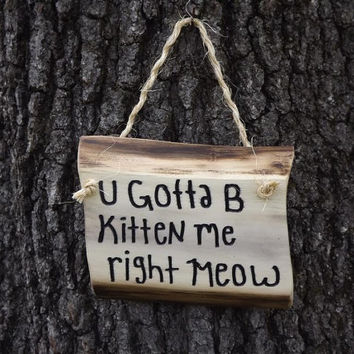 funny wood sign/ cat lover's/ door sign/ personalized sign