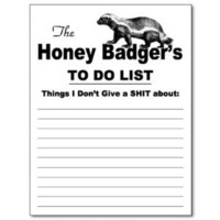 Amazon.com: The Honey Badger Notepad: Office Products