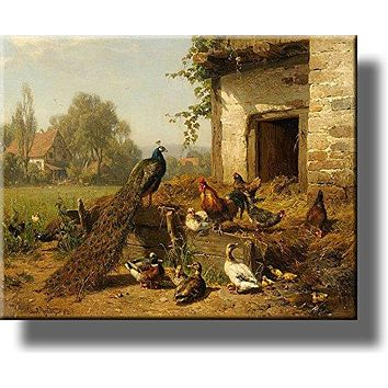 Chicken Coop, Farm Birds Wall Picture on Stretched Canvas, Wall Art Décor, Ready to Hang!