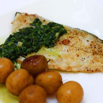 Recipes - Sea Bass in Spinach and Tarragon Sauce