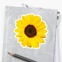 'Sunflower stickers' Sticker by Mhea