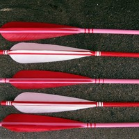 Valentine's Day Decor Arrows Red, Pink and White Love Set