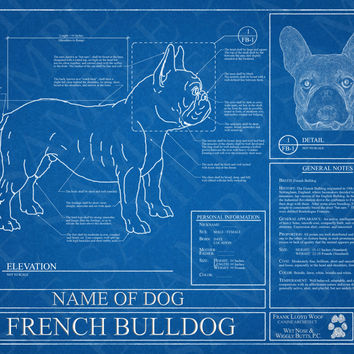 Customized French Bulldog Blueprint