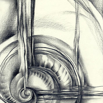 "Contemporary abstract pencil drawing, ""Shell"", paper, original"