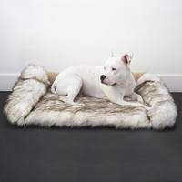 Faux Fur Shag Sydney Orthopedic Luxury Dog Bed
