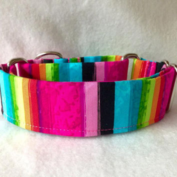 "Patio Prints Stripe Martingale or Quick Release Collar 5/8"" Quick Release 3/4"" 1"" Martingale 1.5"" Martingale 2"""