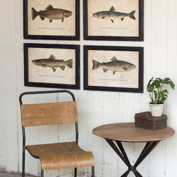 Set Of 4 Framed Prints Under Glass - Trout